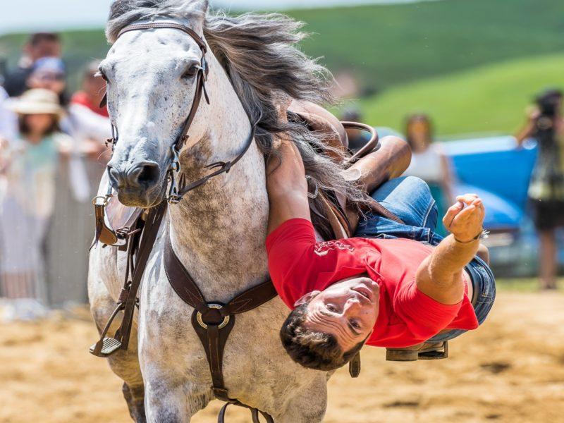 Volteo cu Miron Bococi - credit foto Catalin Nenciu